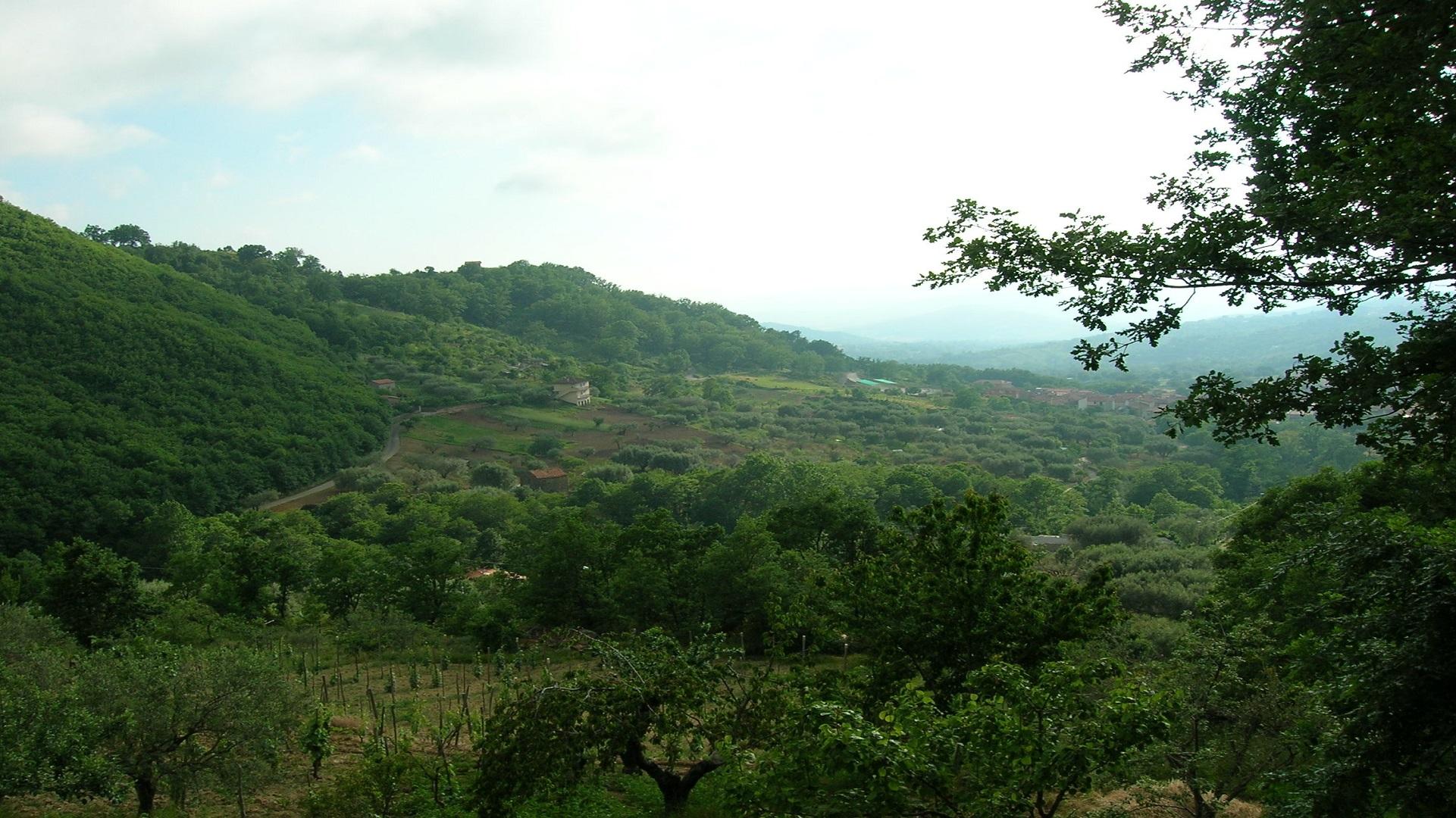 Parco_Cilento_Cann (1)