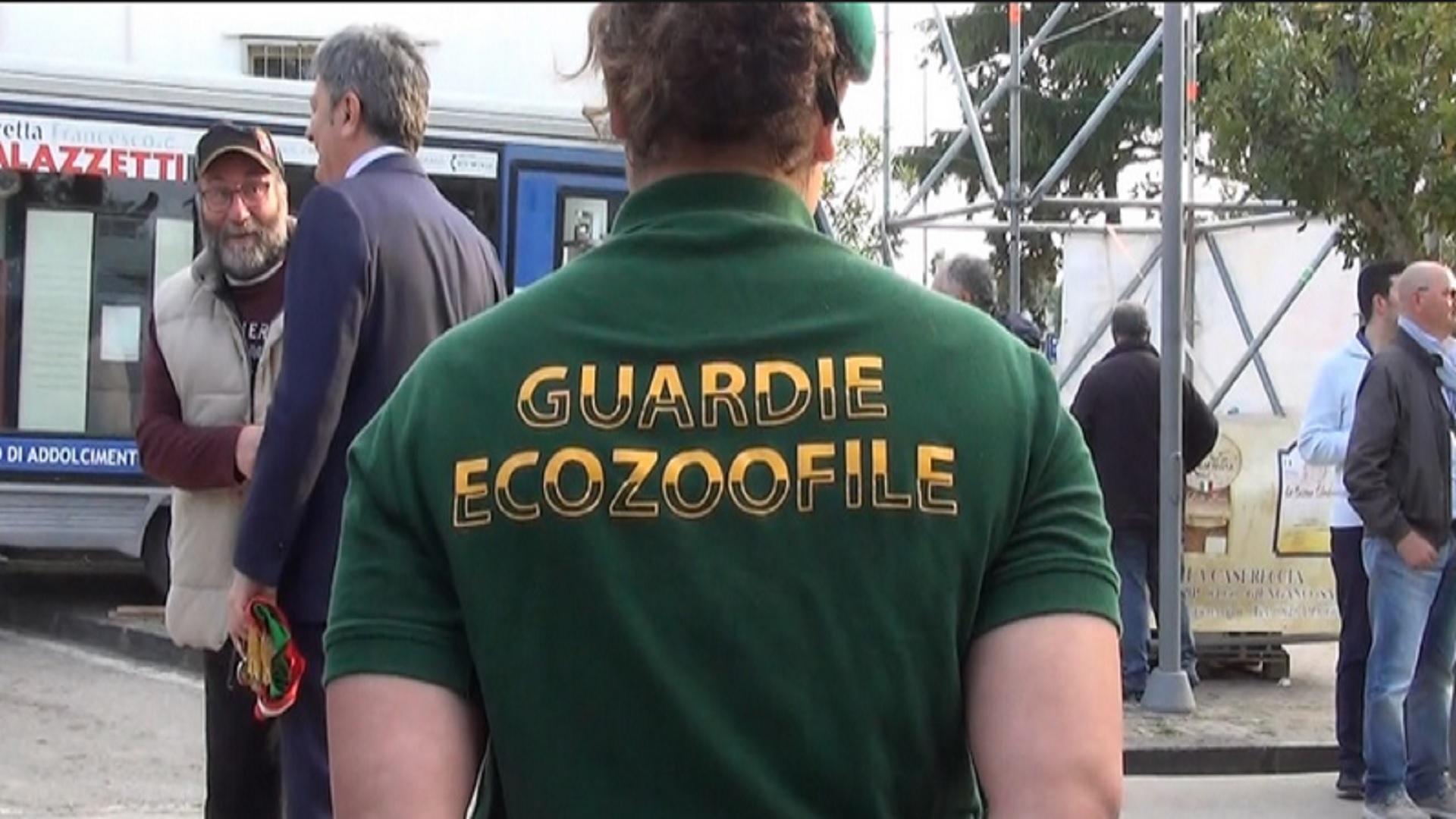 guardie ecozoofile capaccio