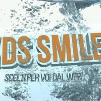 vds-11-200x200