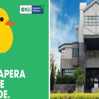 verde (papera+claim+logo)