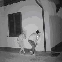 ladri telecamera