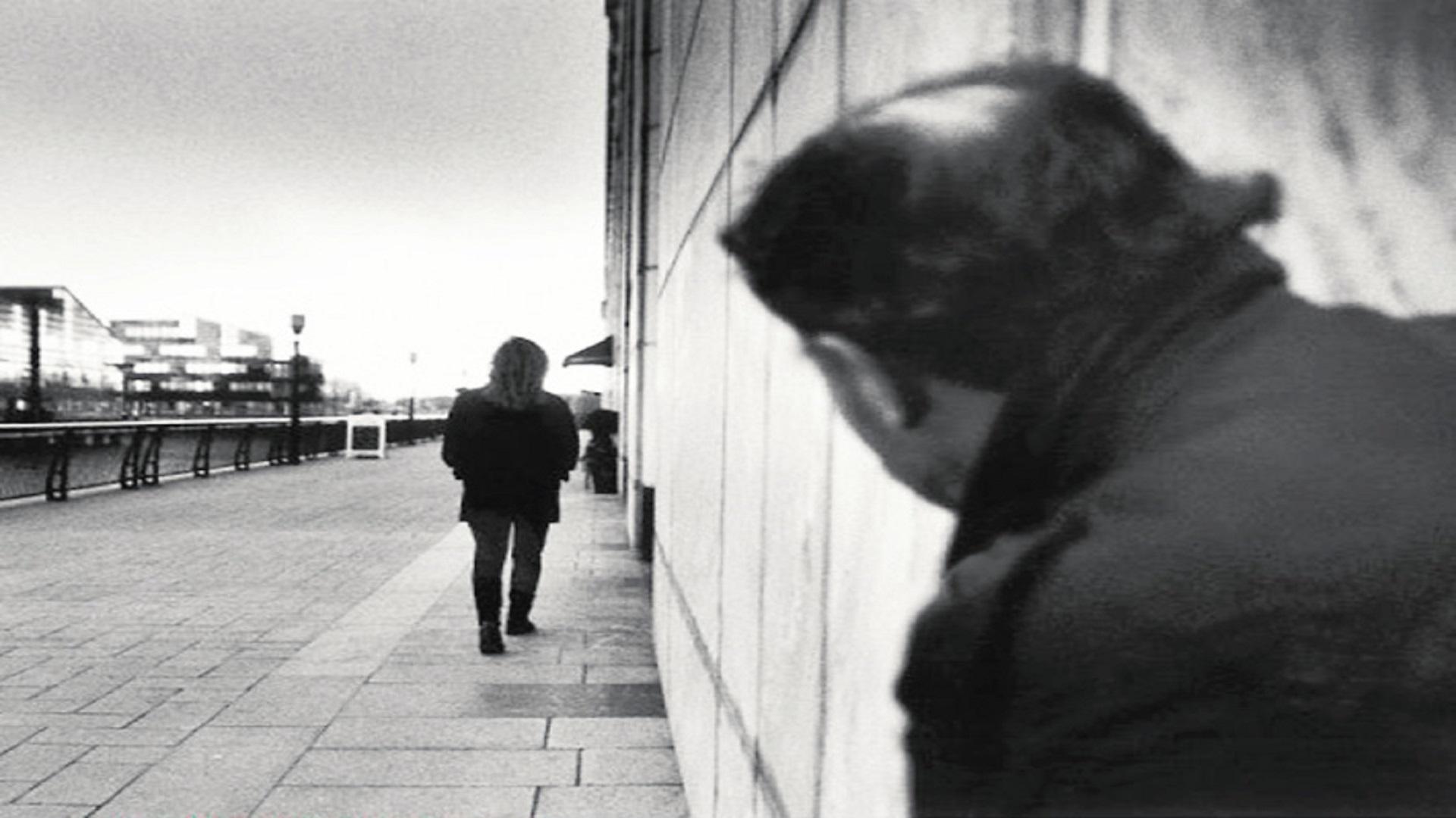 23-Stalking-Man-Rex_opt