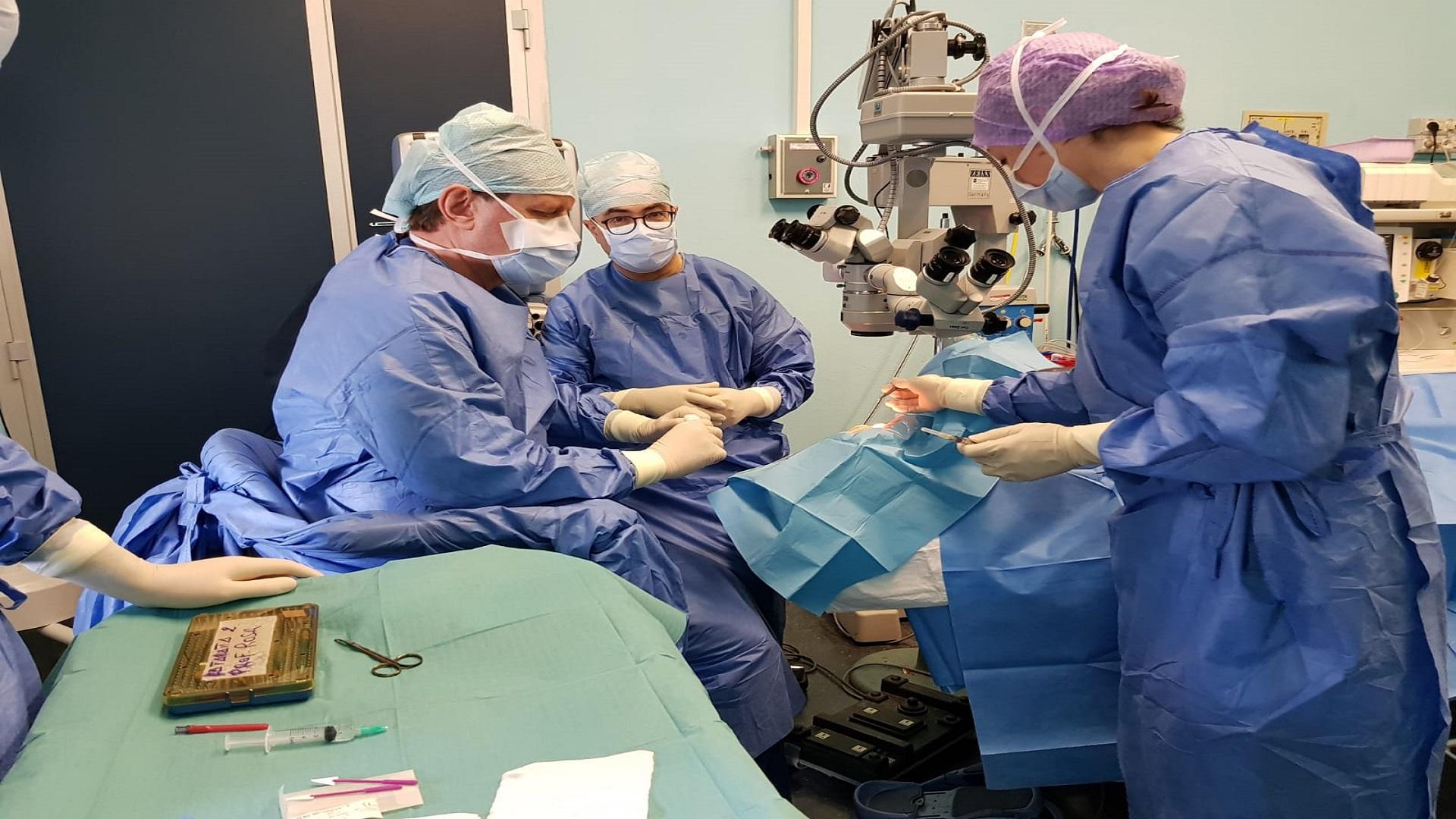 Prof Rosa Sala operatoria