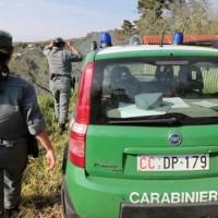 carabinieri-forestale-410028.660x368