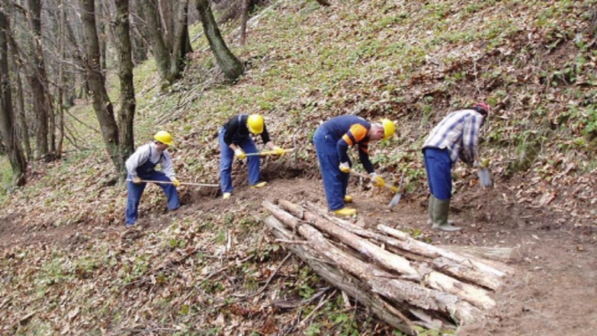 operai forestali